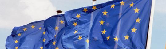 Das Europäische Parlament hat heute eine Resolution zum Online Glücksspiel verabschiedet