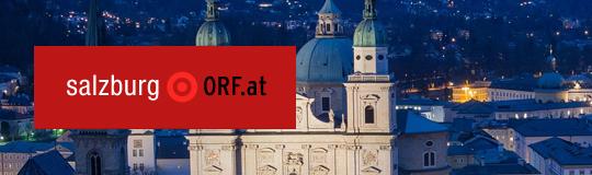 300 bis 600 illegale Automaten in Salzburg. © ORF.at
