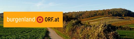 Nicht einmal, wer in der Kommission saß, haben die Interessenten erfahren, kritisiert der VwGH. (C) ORF.at